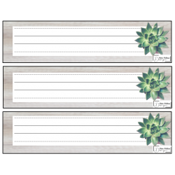 Succulentes (Kit début d'année)