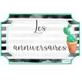 Cactus (Kit début d'année)