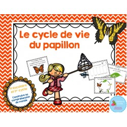 Cycle de vie Papillon