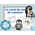 Cycle de vie du manchot