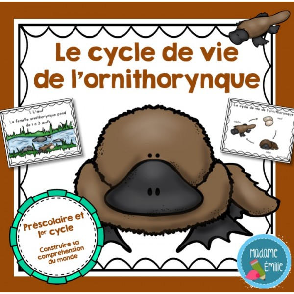Cycle de vie ornithorynque