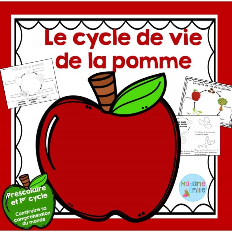 Cycle de vie de la pomme - Dessin d une pomme ...