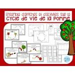 Cycle de vie de la pomme