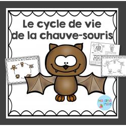 Cycle de vie de la chauve-souris
