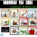 Cycles de vie (Ensemble économique)
