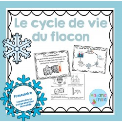 Cycle de vie du flocon