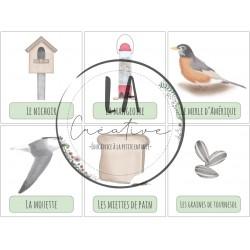 Mots-étiquettes des oiseaux du Québec