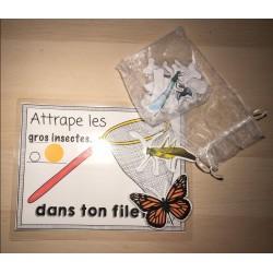 Attrape insectes (concept de taille)