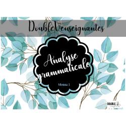 Analyse grammaticale - Niveau 1