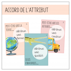 Accord attribut - Petits auteurs