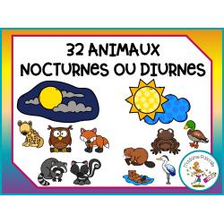 cartes à trier - animaux nocturnes ou diurnes