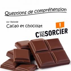 Cacao et chocolat - Compréhension