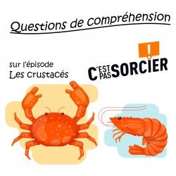 Les crustacés - Compréhension