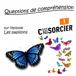 Les papillons - Compréhension