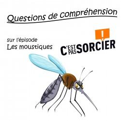 Les moustiques - Compréhension