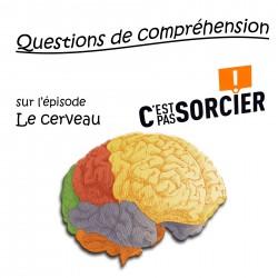 Le cerveau - Compréhension