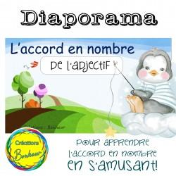 Diaporama - Accord en nombre de l'adjectif