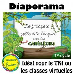 Diaporama - Le français collé à la langue