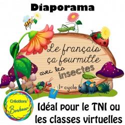Diaporama - Le français ça fourmille