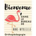 Affiche porte orthopédagogie/classe (flamands)