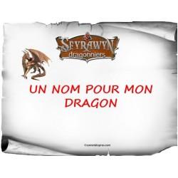 Thème dragons: Un nom pour mon dragon