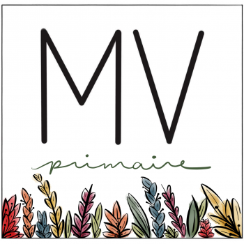 MV primaire
