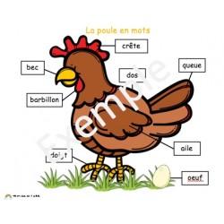 La poule en mots