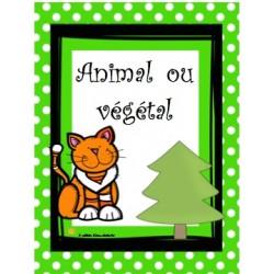 Animal ou végétal