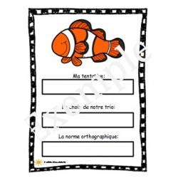 Les orthographes approchées: l'océan