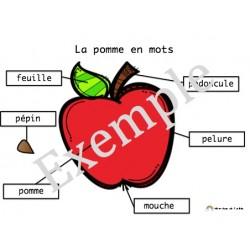 La pomme en mots