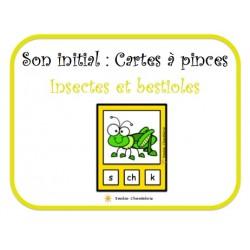 Son initial: Cartes à pinces-Insectes
