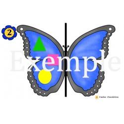La symétrie des papillons