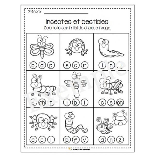 Insectes et bestioles - Son initial à colorier