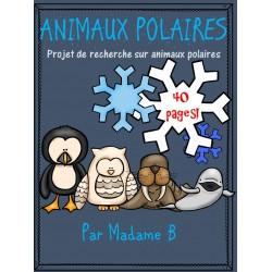 Animaux polaires: recherche