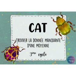 CAT - Trouver la donnée manquante d'une moyenne