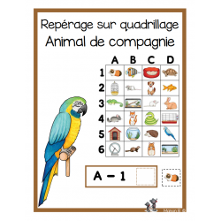 Repérage sur quadrillage (animal de compagnie)