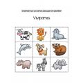 classification et caractéristiques des animaux