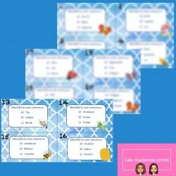 Les noms communs - cartes à tâches