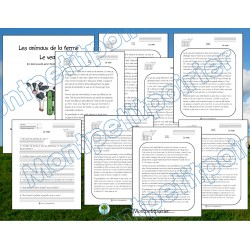 Texte informatif-Le veau  (7 versions)