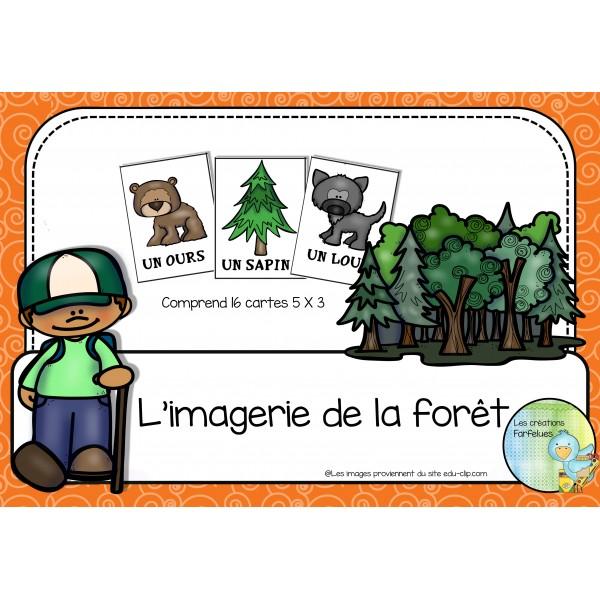 L'imagerie de la forêt