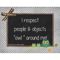 I respect - OWL
