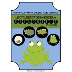 Le cycle de croissance de la grenouille