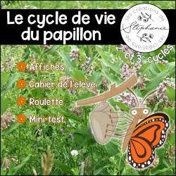 Le cycle de vie du papillon