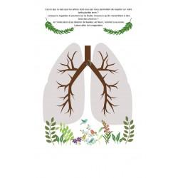 Nos poumons comme des arbres